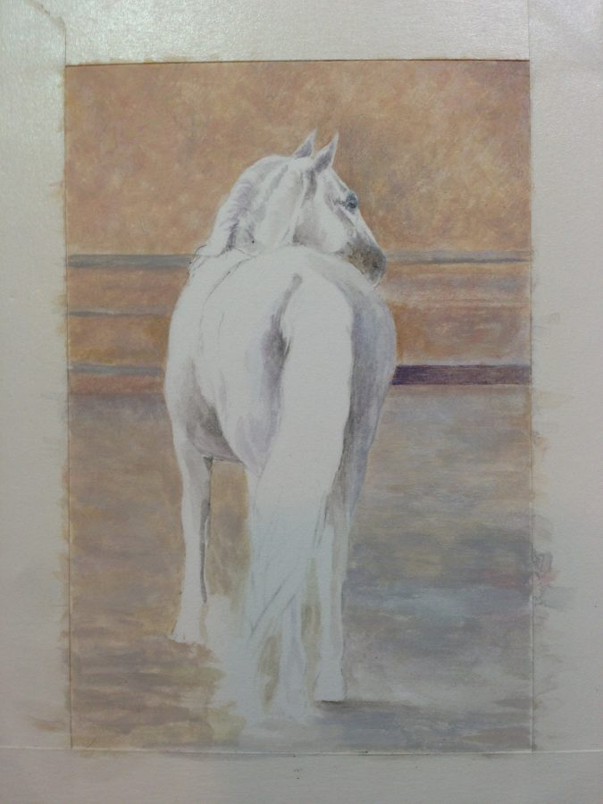 Lipizzaner Stallion miniature
