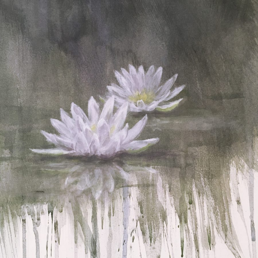 waterlily, casein on paper, Kelly Leahy Radding