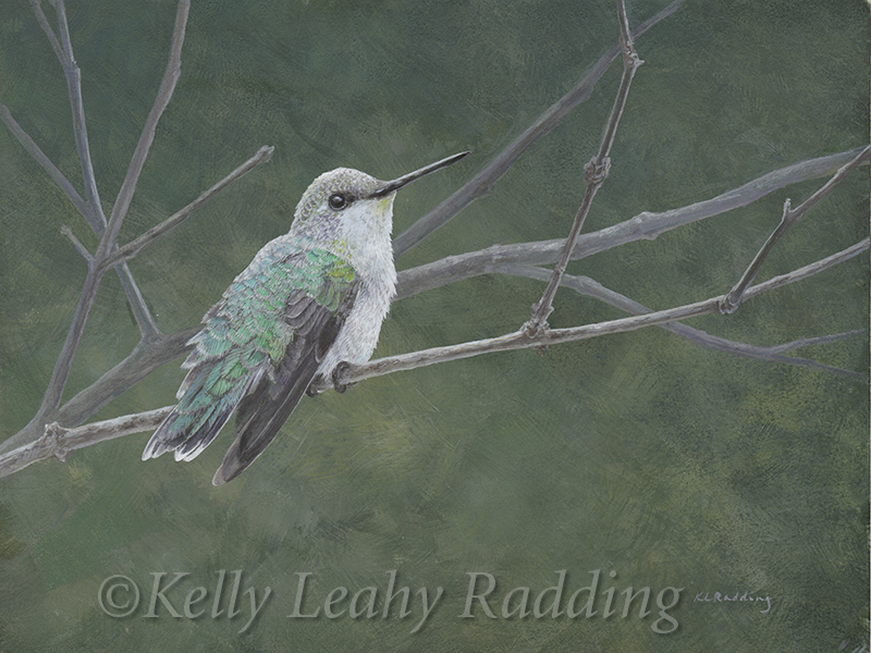 Tiny Dancer, female Ruby-throated Hummingbird, casein on panel, Kelly Leahy Radding