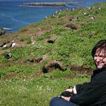 Puffins, Kelly Leahy Radding, Scotland