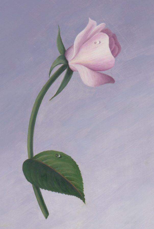 oil, paint, rose, study, rain drop