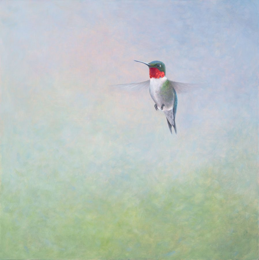 ruby throated hummingbird, hummingbird, kellyleahyradding, alkyd oil, egg tempera