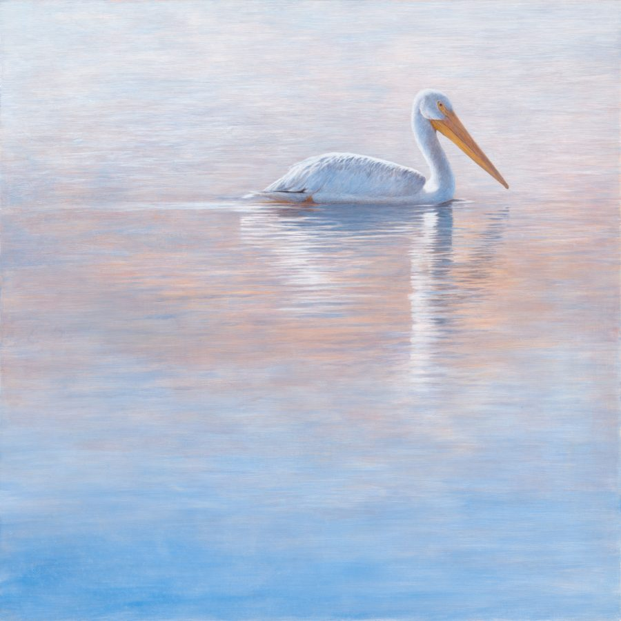 pelican, kellyleahyradding, alkyd, water