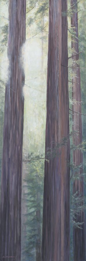 kelly leahy radding, redwoods, casein, muir beach