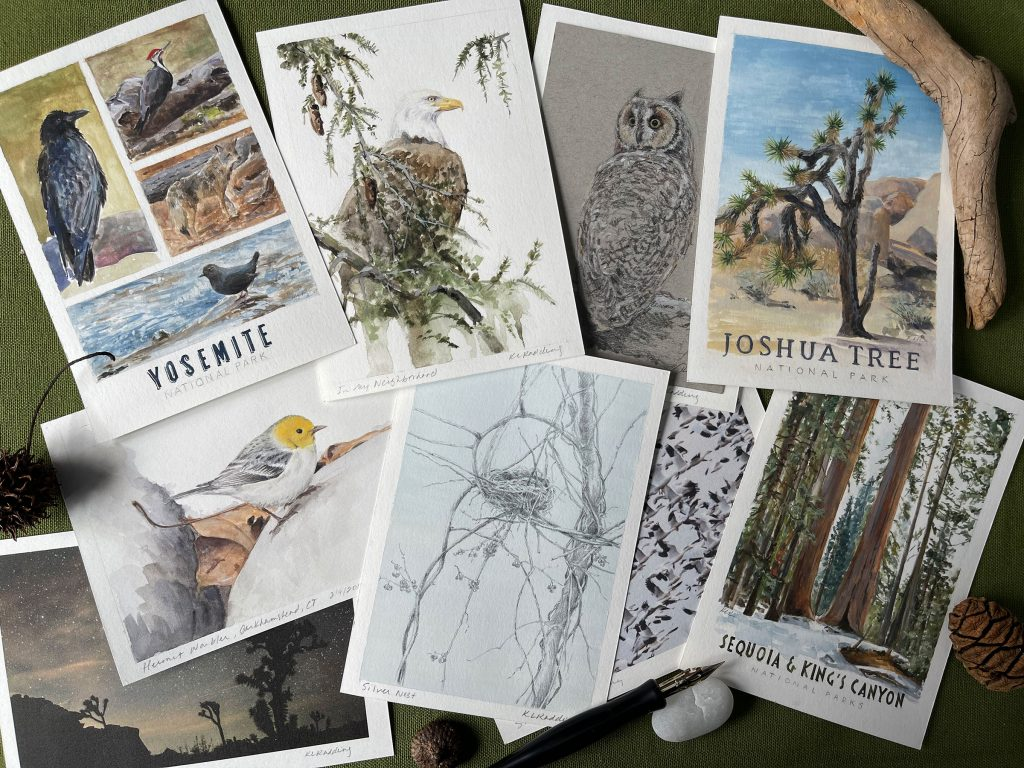 a grouping of my postcards to nature, with nature objects surrounding them.